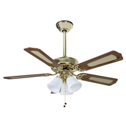 Euro Fans Belaire Ceiling Fan 42 inch Polished Brass with Light 110330.