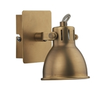 Dar IDA0775 Idaho Natural Brass Single Spotlight
